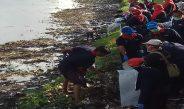 Bersih-Bersih Kali Jangkuk Dinas Kesehatan Provinsi NTB