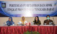 Pertemuan Pemuktahiran Data SDM Kesehatan Tingkat Provinsi Nusa Tenggara Barat